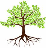 Vector Image Of A Tree On A White Background Stock Image
