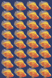 Vector image Orange aquarium fish parrot Stock Images