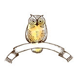 Vector image of an owl  with college ribbon. symbol of wisdom isolated Stock Image