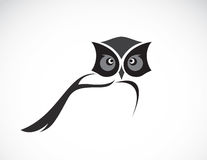 Vector image of an owl design royalty free illustration