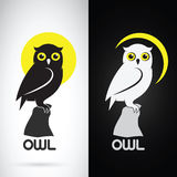 Vector image of an owl design Royalty Free Stock Photo
