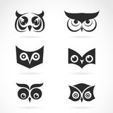 Vector image of an owl face design. Stock Images
