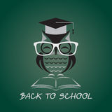 Vector image of an owl glasses with college hat Stock Photos