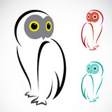 Vector image of an owl. On a white background Royalty Free Stock Photography