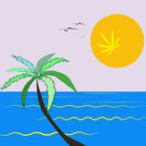 Vector image of Palm and the Sun with Marijuana leaves in abstract style Stock Images