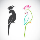 Vector image of a parrot design Royalty Free Stock Image