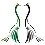 Vector image of peacock Royalty Free Stock Photo