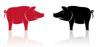 Vector image of an pig Royalty Free Stock Images