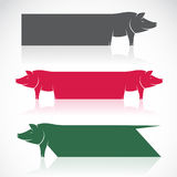 Vector image of an pig banners Stock Image