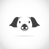 Vector image of pig head. On white background stock illustration