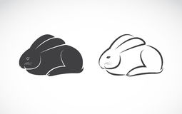 Vector image of rabbit design Royalty Free Stock Photography