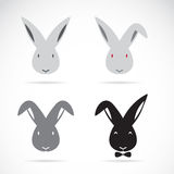 Vector image of an rabbit. On white background Royalty Free Stock Images