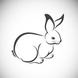 Vector image of an rabbit Stock Photo