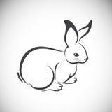 Vector image of an rabbit Stock Photo