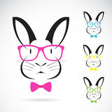 Vector image of a rabbits wear glasses. On white background Royalty Free Stock Photo