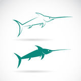 Vector image of an sailfish Stock Photography