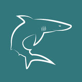 Vector image of sharks Stock Image