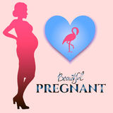 Vector image with silhouette pregnant and flamingo stock images