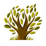 Vector image of single branchy tree, nature concept. Art symboli Royalty Free Stock Photography