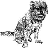Funny dog. Vector image of a sitting cute dog royalty free illustration