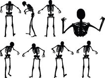 Vector Image - skeleton silhouette in standing in cage pose  on white background Stock Photo