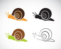 Vector image of an snail Stock Photography