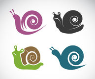 Vector image of a snail Royalty Free Stock Photography