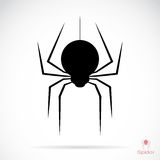 Vector image of an spider Royalty Free Stock Photo
