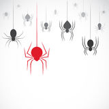 Vector image of an spider on white background Stock Photos