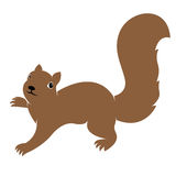 Vector image of an squirrel Royalty Free Stock Images
