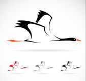 Vector image of an stork. On white background Stock Photography