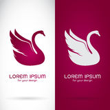 Vector image of an swan design Royalty Free Stock Photos
