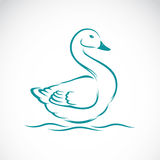 Vector image of swan Royalty Free Stock Photos