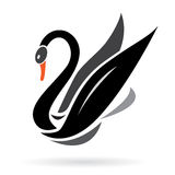 Vector image of swans Royalty Free Stock Images