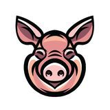 Vector image of swine head Stock Images