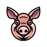 Vector image of swine head Stock Image