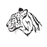 Vector image of an tiger Royalty Free Stock Photography