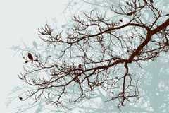 Silhouettes of the oak branches in the winter forest. Vector image of the tree branches in the cold seasons Stock Images