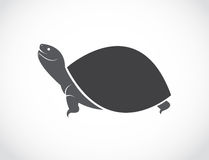 Vector image of an turtle design Stock Image