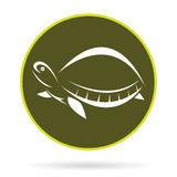 Vector image of an turtle Royalty Free Stock Photography