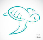 Vector image of an turtle Royalty Free Stock Image