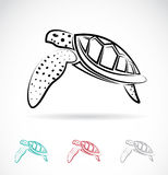 Vector image of an turtle Royalty Free Stock Photo