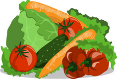 Vector image vegetables still life cucumber tomato carrots cabbage pepper Stock Photos