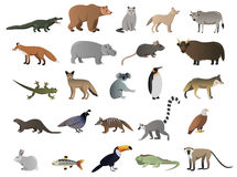 Vector image of wild animals. In ZOO royalty free illustration
