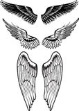 Vector image wings. Format eps 8 Royalty Free Stock Photography