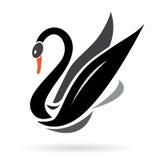 Imagem do vetor das cisnes Imagens de Stock Royalty Free