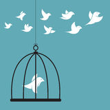 Vector a imagem de um pássaro na gaiola e na parte externa a gaiola Fotos de Stock