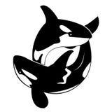 Vector a imagem de uma baleia Fotos de Stock