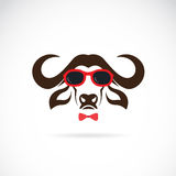 Vector images of buffalo wearing sunglasses Stock Photos