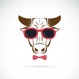Vector images of bull wearing sunglasses Stock Photos